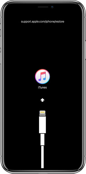 enter iPhone X iPad Pro Recovery Mode